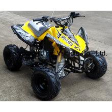 China Fábrica 110cc novo ATV (JY-100-1A)