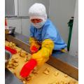 Suchi großes Paket gekühlt Ingwer Paste würzen Püree