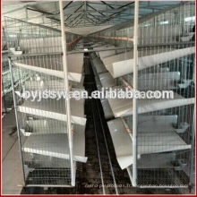 Équipement professionnel de ferme de volaille de fabricant élevant la cage commerciale de lapin