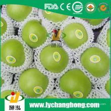 China Granny Smith Äpfel