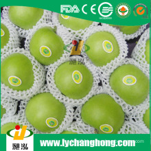 China Granny Smith Apples