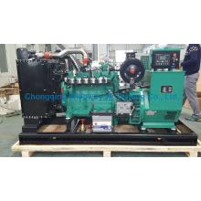 Ly6bg80kw Hochwertige Eapp Gas Generator Set