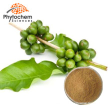 Weight Loss Bulk Price of Green Coffee Bean Extract