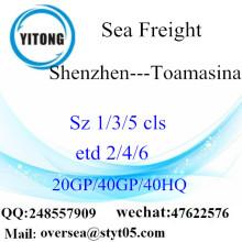 Penghantaran Pelabuhan Laut Port Shenzhen Ke Toamasina