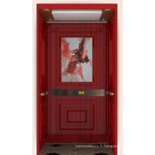 Ascenseur de maison magnifiquement décoré avec une bonne qualité Prix compétitif