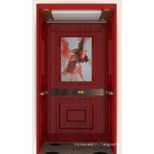 Beautifully Decorated Home Elevator with Good Quality Competitive Price