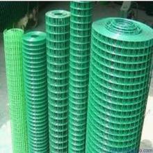 """Grüne Farbe PVC beschichtet geschweißte Drahtgeflecht 1/2 """"3/4"""" 1 """""""
