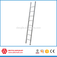 Popular scaffold ladder,straight 6 m ladder,made in China ladder