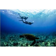 2017 nova visão completa panorâmica Snorkel máscara-Full Face Snorkeling Design. com tecnologia anti-neblina e anti-vazamento, veja mais mundo de água com maior área de visualização