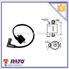 Gut ausgebildete Zündelektrode für Gasbrenner für CG125 (Europäische Norm)
