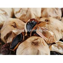 Boîte de fermentation à l'ail noir chinoise aiguille noire