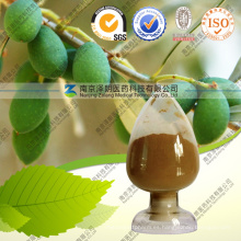 Polvo de extracto natural a granel 20% Extracto de hoja de olivo Oleuropeína