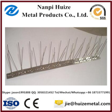 Stainless Steel 304 Material Plastic Base Bird Spikes