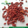 สมุนไพรดิบ Ningxia Goji Berries / Lycii Wolfberry
