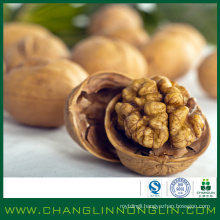 alibaba golden supplier within high protein New crop walnut in shell