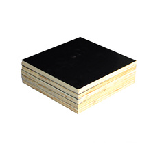 Cheap 17mm Black Film Faced Plywood to Pakistan