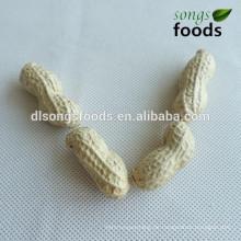 Malaysia Export von Erdnusskernen