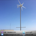 Sunning 300W 5 Blades Small-Scale Wind Turbines Generator