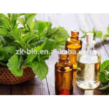 Chinese Peppermint Essential Oil Bulk