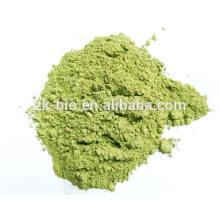 Organic Peppermint Leaf Powder