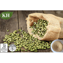 Green Coffee Bean Extract Total Chlorogenic Acids 50% HPLC