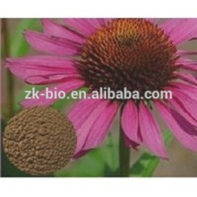 Best selling China Organic Echinacea Extract