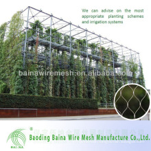 Green Plant Climbing Rope Netting
