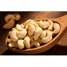 China Hot Sale Cashew Nut (1-2cm)