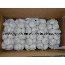 Новый урожай китайского чистого белого чеснока 500г