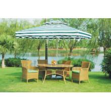 Patio de mimbre Jardín Mobiliario de jardín silla y mesa Bg-011