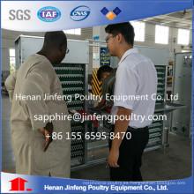 Sistema de recolección de huevos profesional de China con menor tasa de ruptura de huevos
