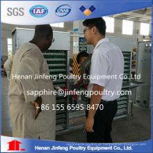 Sistema de coleta de ovos profissional com menor taxa de quebra de ovo