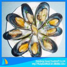 Congelado semi shell mexilhão é um dos nossos principais produtos