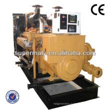 Установленный на жидком топливе газовый генератор, одобренный CE для станции CNG