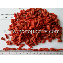 Ningxia orgánica Goji Berry (bajo SO2)