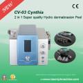 2 в 1 Лицо Diamond Hydro Hydro Дермабразия кожи Чистая красоты машина CV-03