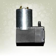 Water vapor dual-purpose diaphragm pump