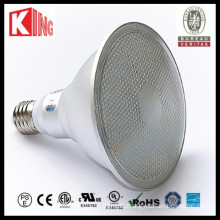 Waterproof IP65 10W PAR38 COB/SMD LED