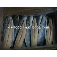 frozen spanish mackerel fish fillets