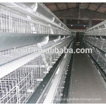 Best sale broilers chicken cage for sale