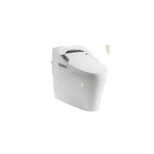 Lojas sanitárias populares Auto Flush controle remoto multi-funções fechadura inteligente banheiro real