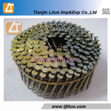 Screw Shank Coil Nails Coil Wire Nails in China Factory