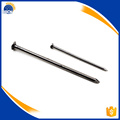 Galvanized common wire nail size factory