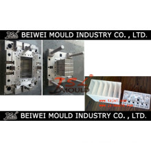 Good Quality Injection Plastic Auto Battery Container Mold