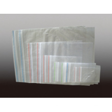 Plastic Transparent PE Zipper Bag