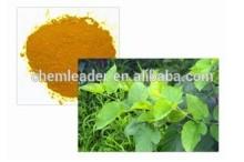 Mulberry Leaf Extract 1-Deoxynojirimycin(1-DNJ) CAS:19130-96-2