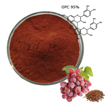 Compre extracto de semilla de uva de alta calidad 95% OPC