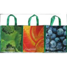Дешевая и высококачественная нетканая хозяйственная сумка с офсетной печатью