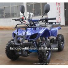 49cc 2 stroke ATV(LZA50-11)