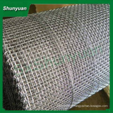 High quality hot sale White steel crimped wire mesh /Steel wire crimped mesh/Breeding crimped wire mesh